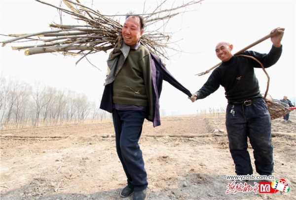 jia_haixia_jia_wenqi_1