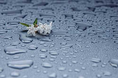 Az eső – ami neked bosszúság, az nekem az életet jelentette