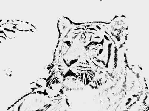 A szerzetes, a tigrisek és az eper – egy zen történet a pillanat megéléséről